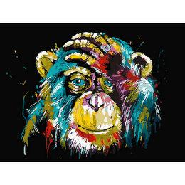 Игрушки-антистресс - Цветная обезьяна Артикул : GX 25714, 0