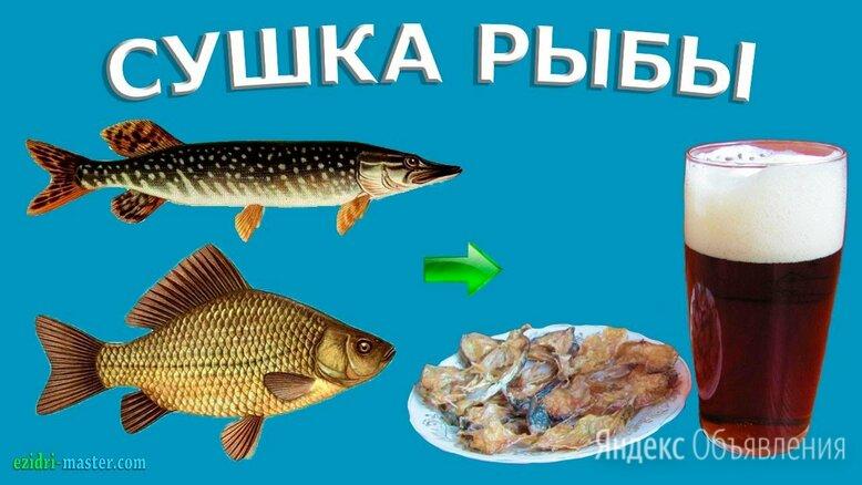Большая складная овощная 45X45X65 подвесная сетка-сушилка для рыбы по цене 1550₽ - Сушилки для овощей, фруктов, грибов, фото 0