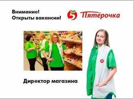 Директор - Директор магазина Пятёрочка, 0