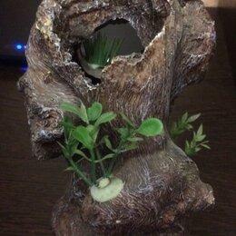 Декорации для аквариумов и террариумов - Декор для аквариума , 0