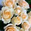 Цветы в ГОРЯЧЕМ Ключе Доставка  по цене 250₽ - Цветы, букеты, композиции, фото 7