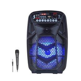 Компьютерная акустика - Комбоусилитель  Portable speaker PK-605, 0