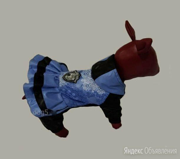 дождевик для собаки для девочки по цене 1300₽ - Одежда и обувь, фото 0