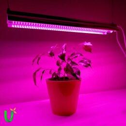 Аксессуары и средства для ухода за растениями - Светильник для растений фитосветильник на подоконник, 0