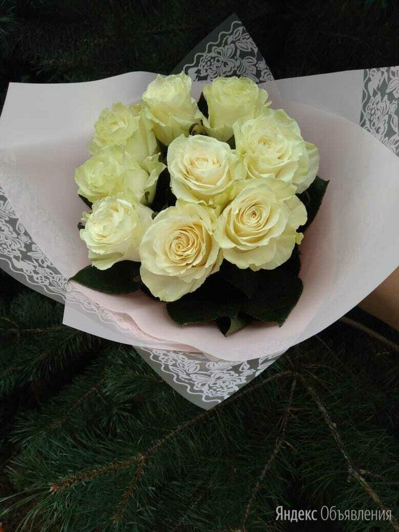 Роза пионовидная мондиаль по цене 100₽ - Цветы, букеты, композиции, фото 0