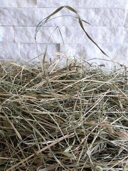 Сено и наполнители - Отборное сено новый урожай май-июнь 2021 года, 0