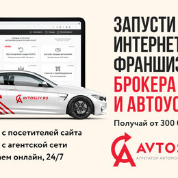 Сфера услуг - Франшиза автомобильный бизнес страхования ОСАГО AVTOSLIV, 0