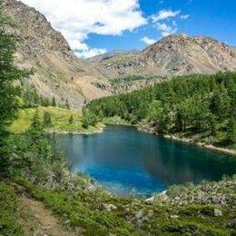 Экскурсии и туристические услуги - Туры на Алтай, 0