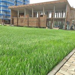 Прочие услуги - газонная трава, 0