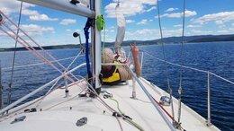 Туры - Прогулки на яхте по озеру Тургояк,  экскурсии на…, 0