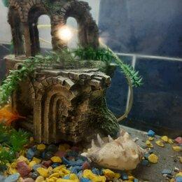 Аквариумы, террариумы, тумбы - Аквариум 120 л., с крышкой-подсветкой, декором., 0