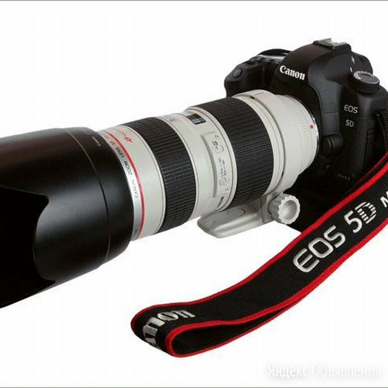 Canon 5D markii Canon 70-200 2.8 по цене 80000₽ - Фотоаппараты, фото 0
