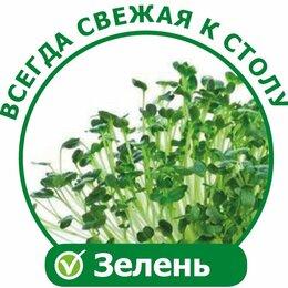 Аксессуары и средства для ухода за растениями - Домашний аэросад двухмодульный Здоровья Клад X2 проращиватель семян, 0