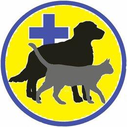 Услуги для животных - Ветеринария, 0