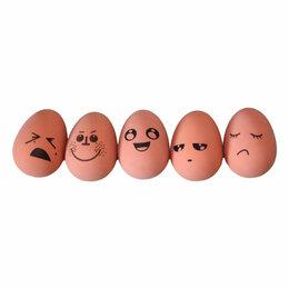 Развивающие игрушки - Игрушка Яйцо MTR-0083 , 0