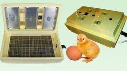 Товары для сельскохозяйственных животных - Инкубатор для цыплят утят гусят 45 яиц Золушка…, 0