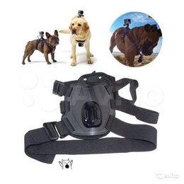 Аксессуары для экшн-камер - Крепление GoPro Xiaomi на собаку, 0