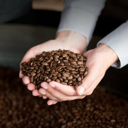 Продукты - Свежеобжаренный кофе в зёрнах, 0