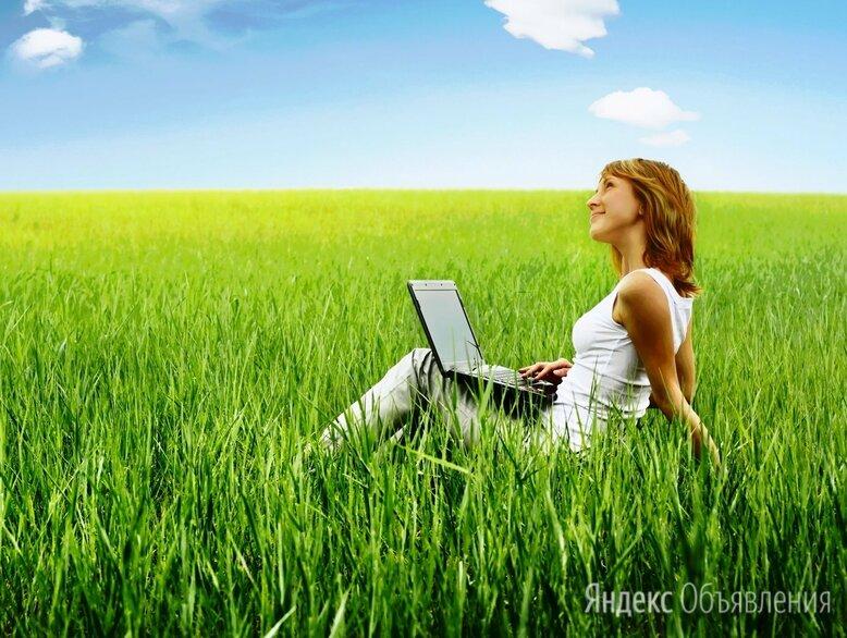 Дополнительный заработок   без вложений онлайн  - Специалисты, фото 0