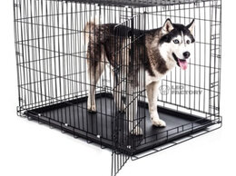 Клетки, вольеры, будки  - Клетка для собак вольер №5, 0