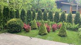 Садовник - садовник вахта, 0