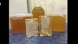 Продукты - Мед натуральный с собственной пасеки, 0