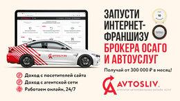 Сфера услуг - Бизнес на страховании ОСАГО по франшизе AVTOSLIV, 0