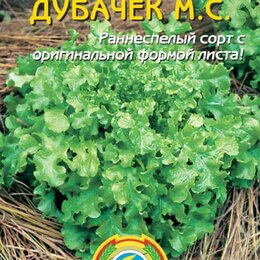 Блюда, салатники и соусники - Салат Дубачек М.С. ПЛ, 0