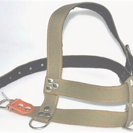 Шлейки  - Шлейка для собак ездовая брезент N0 (стаффорд.), 0