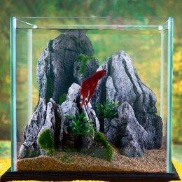 Аквариумные рыбки - Комплект Аквариум куб +рыбка Петушок + корм, 0