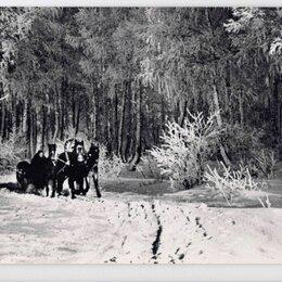 Открытки - Открытка СССР Русская зима 1966 Калинин чистая Тройка снежный лес дорога снег, 0