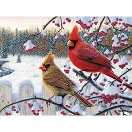 Настольные игры - Кардиналы зимой Артикул : GB 75891, 0
