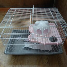 Клетки и домики  - Продается клетка для хомяков, крыс большая, 0
