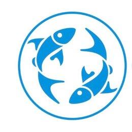 Продавцы и кассиры - Ведём подбор продовца в рыбный магазин. , 0