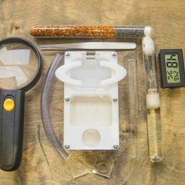 Прочие товары для животных - Наборы с фермой-инкубатором, муравьями, аксессуарами, 0