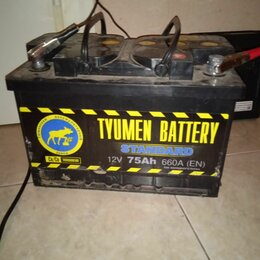 Аккумуляторы и комплектующие - Автомобильный аккумулятор tyumen battery standard 6ct-55l 525а п.п., 0