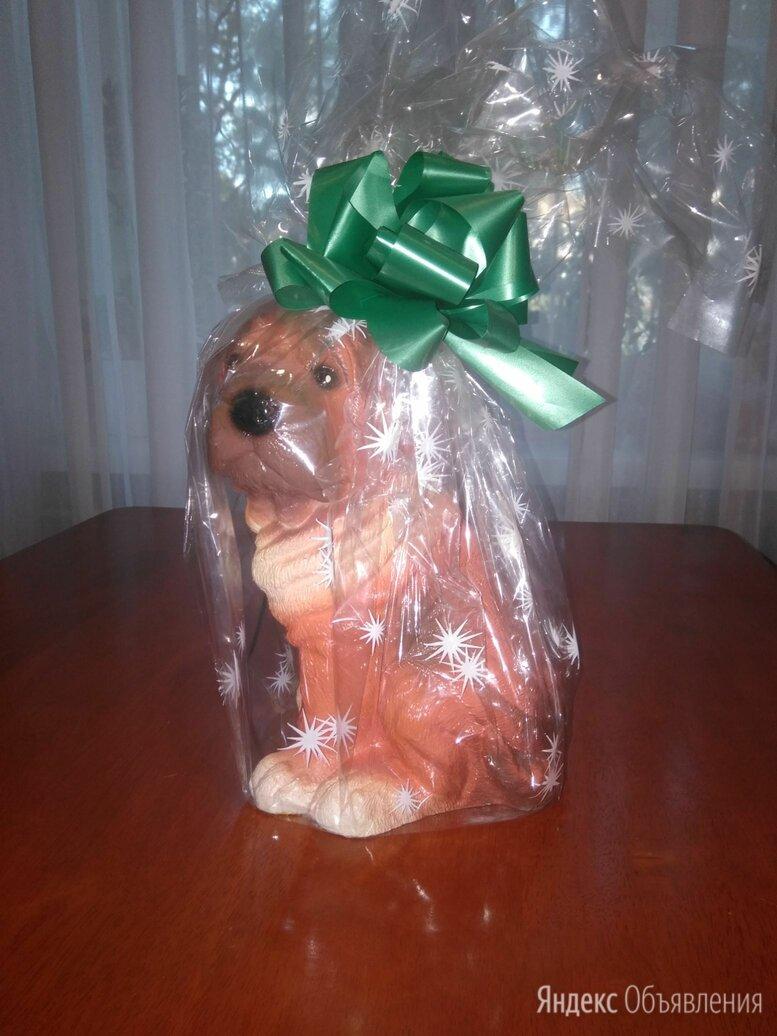 Статуэтка-копилка собака по цене 400₽ - Статуэтки и фигурки, фото 0
