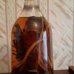 Сувениры - Сувенир скорпион и кобра , 0