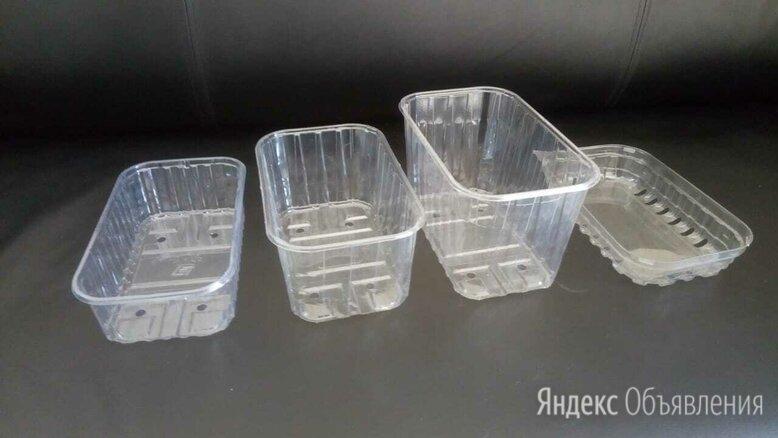 Пластиковые контейнеры  по цене 2₽ - Контейнеры и ланч-боксы, фото 0