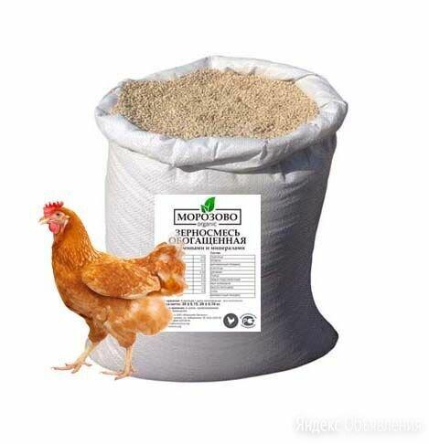 Комбикорм «Зерносмесь обогащенная» для домашней птицы 30 кг по цене 950₽ - Корма, фото 0
