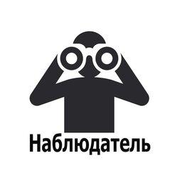 Волонтеры - Наблюдатель на выборы, 0