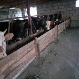 Сельское хозяйство - Ограждение кормового стола для коз, 0