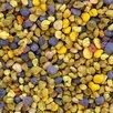 Мёд свежий цветочный 2021 по цене 500₽ - Продукты, фото 6
