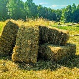 Товары для сельскохозяйственных животных - Сено луговое в квадратных тюках. , 0