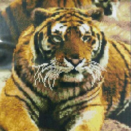 Настольные игры - Тигры Артикул : GF 4405, 0