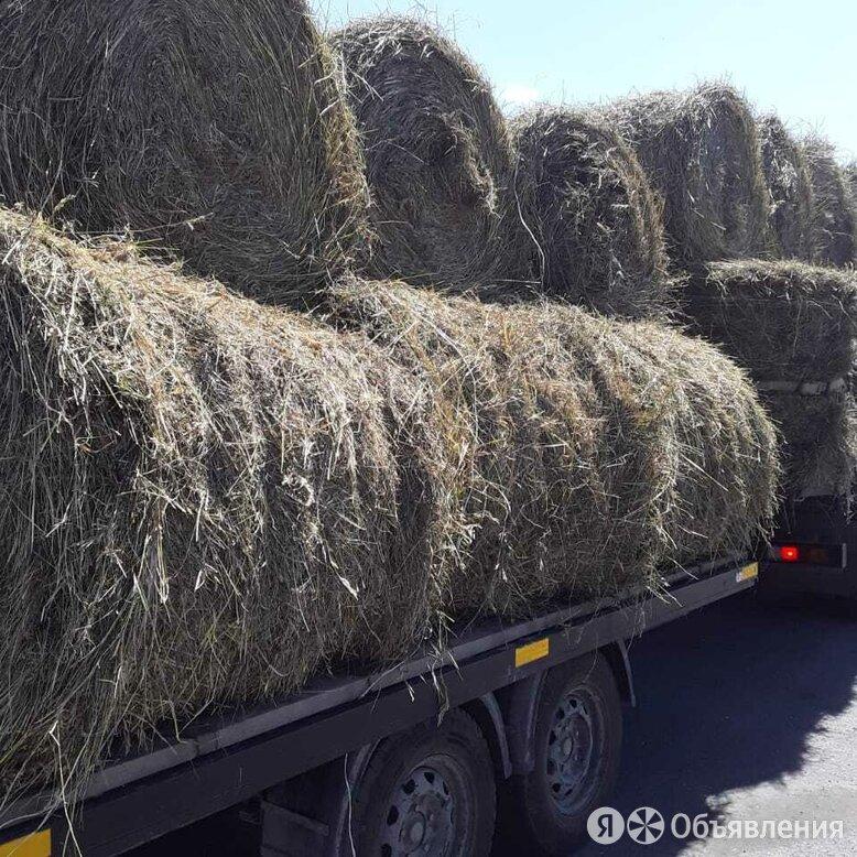 Сено в рулонах2021 по цене 1200₽ - Товары для сельскохозяйственных животных, фото 0