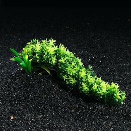 Растения для аквариумов и террариумов - Композиция с растениями искусственными для аквариума, 25 х 10 см, 0
