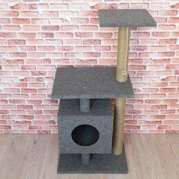 Когтеточки и комплексы  - Комплекс для кошек с домиком и когтеточкой, 0