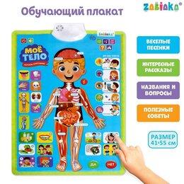 Обучающие плакаты - Обучающий плакат 'Изучаем анатомию Моё тело', 0