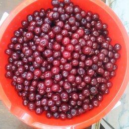 Продукты - Свежая вишня вишни, 0